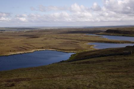 moorland: Dunnet head moorland, Caithness, Scotland Stock Photo