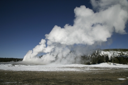 predictable: Old faithful letting off steam, Yellowstone USA.  Stock Photo