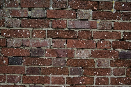 Man made brick wall showing pattern photo