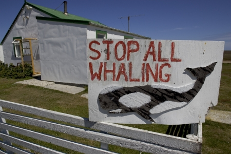 Whaling sign, Falklands, Sea Lion island,  Archivio Fotografico