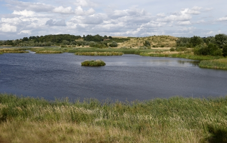 Middleton Hall RSPB Reserve, Midlands, July 2013 Stock Photo