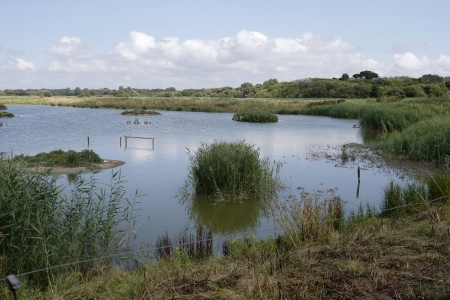 meon: Titchfield Haven, View from Meon Shore Hide, Hampshire, August 2013 Stock Photo