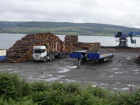 mull: Timber at port, Isle of Mull, Scotland, July 2015 Editorial