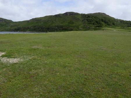 mull: Machair grassland, Calgary Bay, Isle of Mull, Scotland, July 2015