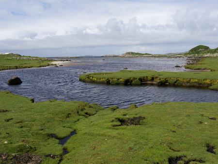 mull: Fidden, Ros of Mull, Scotland, July 2015