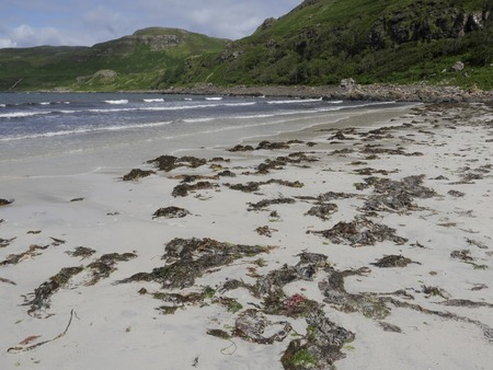 mull: Calgary Bay, Isle of Mull, Scotland, July 2015