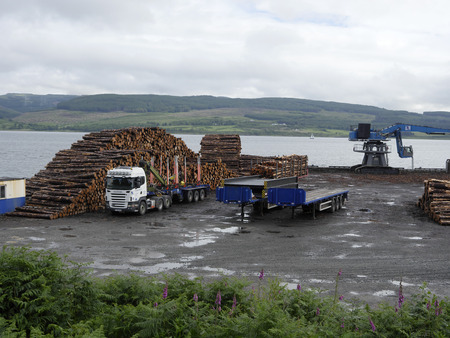 mull: Timber at port, Isle of Mull, Scotland, July 2015 Editorial