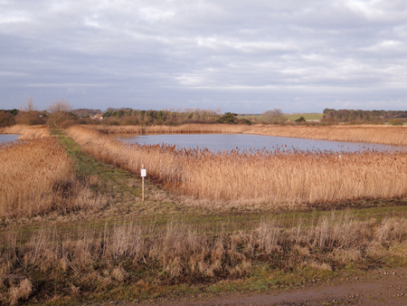 Bawdsey pools, East Lane, Suffolk, birdwatching site, January 2019
