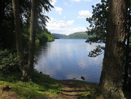 RSPB Lake Vyrnmy Reserve, Wales, July 2019