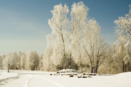 Moonlight landscape shot at the bank of Volga river, Russia Stock Photo - 8127084