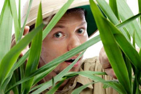 pith: Amazed young man wearing pith helmet peeking through the green foliage, white background, close-up