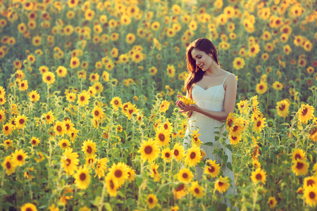 Portrait of happy young woman in a field of sunflowers; copy space Stockfoto