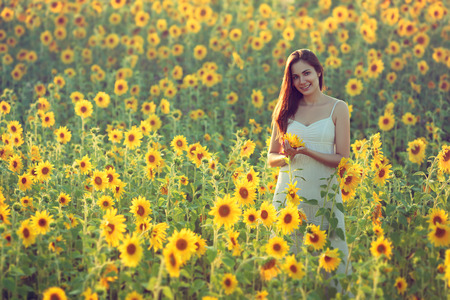 Portrait of happy young woman in a field of sunflowers; copy space Standard-Bild