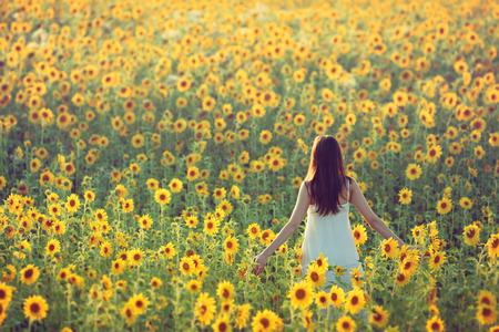 campo de flores: Joven mujer caminando lejos en un campo de girasoles, vista desde la espalda; espacio de la copia Foto de archivo