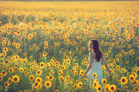 looking back: Young woman walking away in a field of sunflowers, view from her back; copy space
