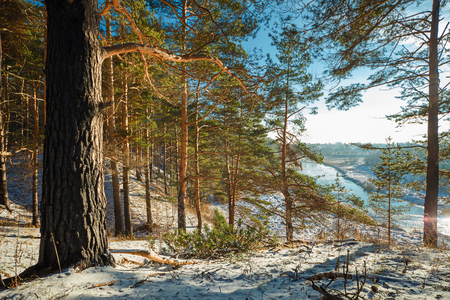 nerl river: Winter forest on the hill and river below, sunny day. The Nerl River in Yaroslavl Oblast, Russia. Stock Photo