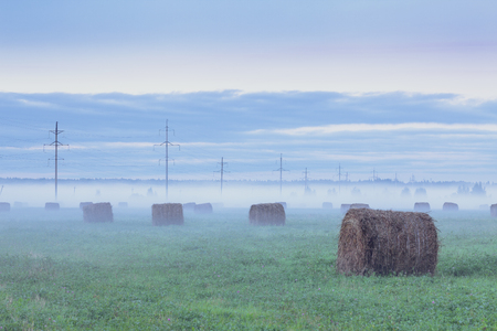 Rural landscape. Foggy field with haystacks and telegraph poles at sunset