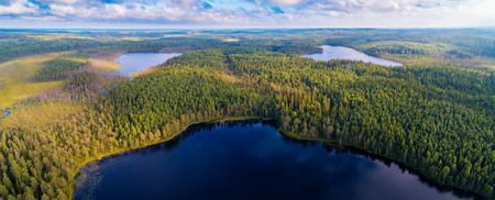Aerial panoramic  view of forests and lakes of Karelia region, Russia Stockfoto