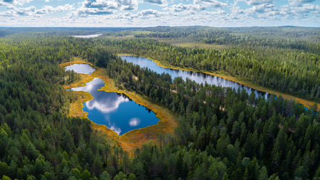 Aerial view of forests and lakes of Karelia region, Russia