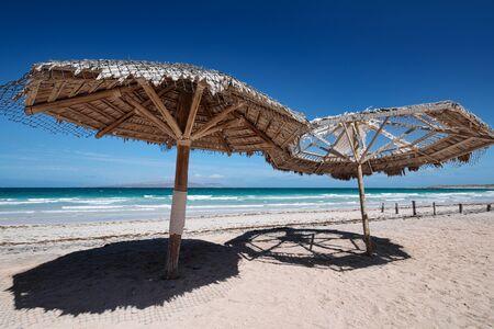 Large wooden umbrellas at Playa El Tecolote near La Paz, Mexico Фото со стока
