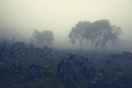 Barbed wire fence along the rocky hill in milky mist. Aquismon, Huasteca Potosina, Mexico Фото со стока