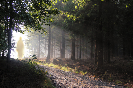 Jesus Christ walking after His resurrection. Figure in sun lights. Sunning shine in forest. Archivio Fotografico