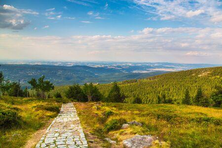 Prado verde en la montaña con vista al cielo azul