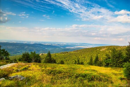 Green Nature Landscape with mountain view