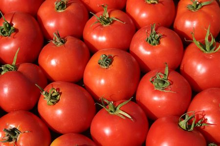 ripe red tomatoes at the farmers market photo