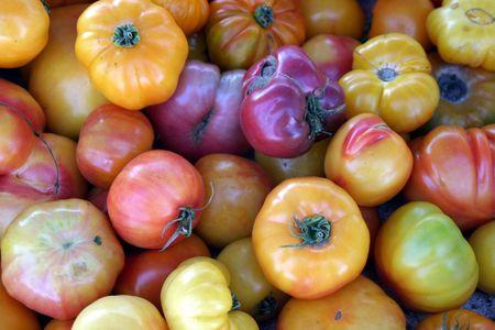 heritage tomatoes photo
