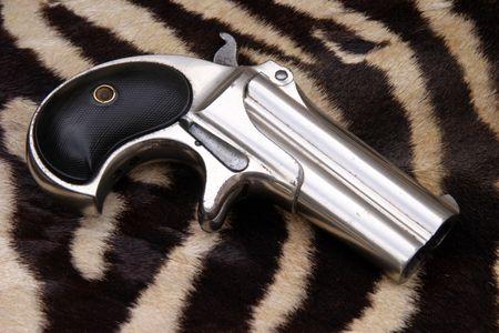 Circa 1889, Model 95, Type II Model 3 Double Derringer on real Zebra Fur Banco de Imagens