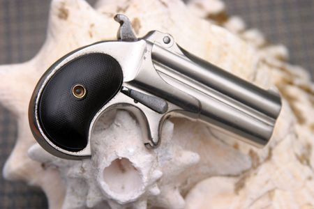 Circa 1889, Model 95, Type II Model 3 Double Derringer on a conch shell showing its true small size