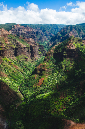 Kauai is Hawaii's fourth largest island and is sometimes called the Garden Island, which is an entirely accurate description