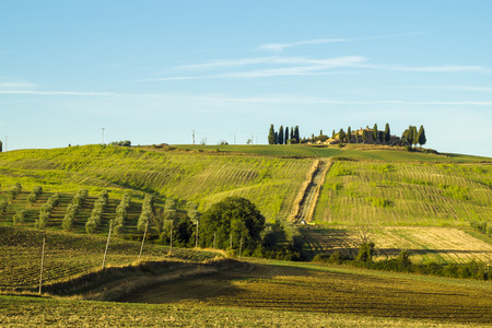 pienza: Pienza,Italy-September 2015:the famous Tuscan landscape at sunrise
