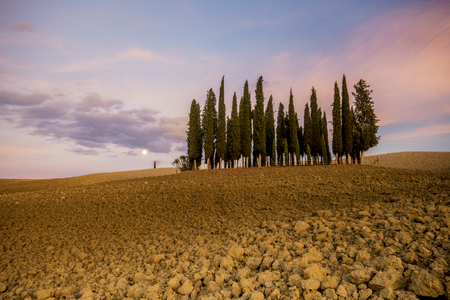 podere: the famous Tuscan landscape at sunrise Stock Photo