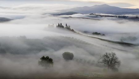 wine road: famous Tuscan landscape at sunrise
