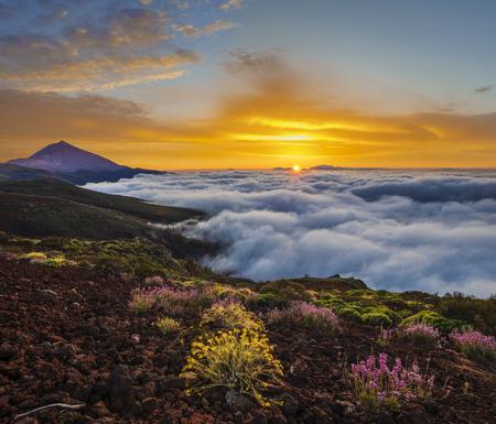 Teide volcano in Tenerife in the beautiful light of the setting sun Standard-Bild - 102573309