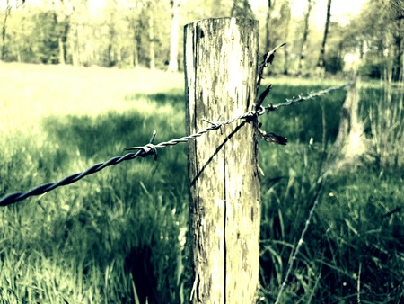 wire: Barb wire fence