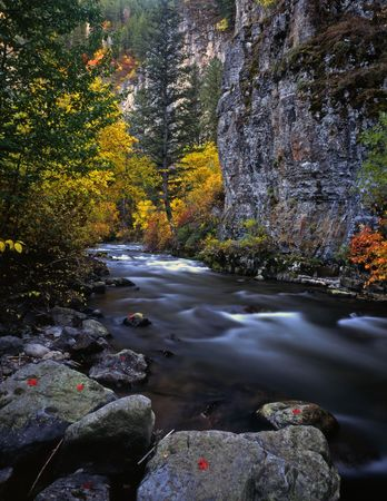 The Logan River, in Utah, photographed during the autumn season.