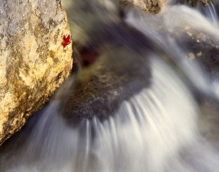 rushing water: Rushing water in Lost Maples State Park, Texas.