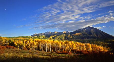 West Beckwith Mountain, in the Gunnison National Forest of Colorado, photographed during the autumn season. Stock Photo - 729909