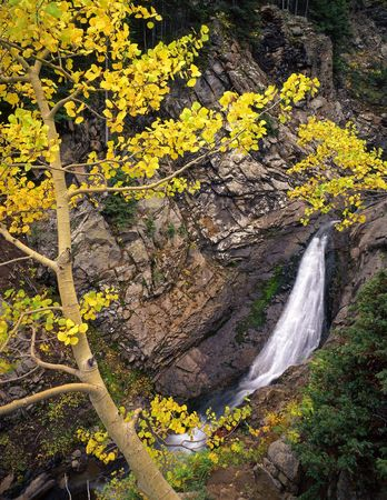 A small waterfall and aspen tree in the Gunnison National Forest of Colorado. Stock Photo - 729908