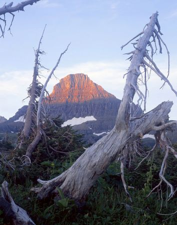 Reynolds Mountain in Glacier National Park, Montana. photo