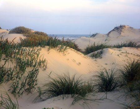 desert island: Sand dunes on South Padre Island National Seashore, Texas.