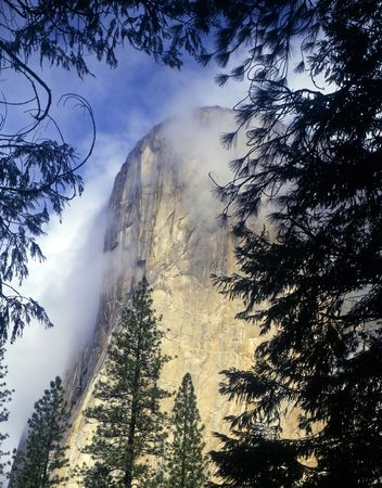 el capitan: El Capitan and low clouds in Yosemite National Park, California.