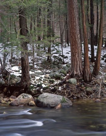 merced: The Merced River in Yosemite National Park, California.