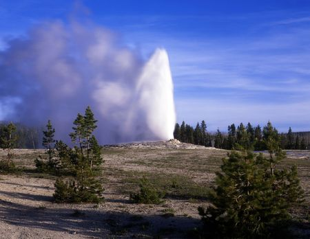 yellowstone: The Old Faithful Geyser in Yellowstone National Park, Wyoming.