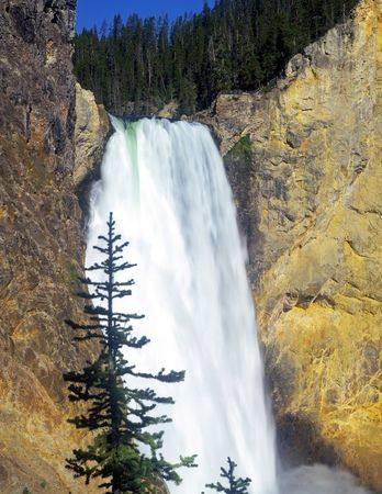 The Lower Falls of the Yellowstone River in Yellowstone National Park, Wyoming. photo