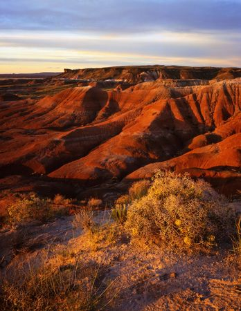 The Painted Desert in Petrifited Forest National Park, Arizona. Stock Photo - 814682