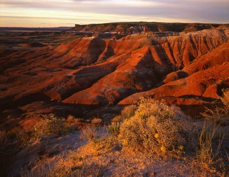 The Painted Desert photographed from Lacey Point in Petrified Forest National Park, Arizona. Stock Photo - 814683